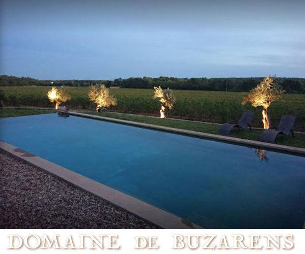 domaine-de-buzarens-visuelBF23574B-1789-9252-3589-461DD8CFCC71.jpg